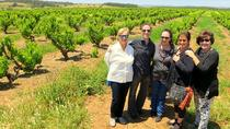Barossa Valley Wine Exploration Day Trip from Adelaide or Glenelg, Adelaide, Day Trips