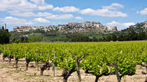 Les Baux de Provence Tour from Avignon: Provencal Wine and Olive Oil, Avignon