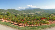 Rhone Valley Wine Tour from Avignon, Avignon, Private Sightseeing Tours