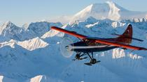 Grand Denali Flightseeing tour from Talkeetna, Anchorage, Air Tours