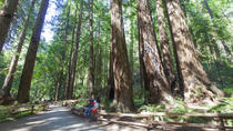 Muir Woods and Sausalito Tour from San Francisco Including Optional Bay Cruise, San Francisco, Bus ...