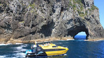 Half-Day Bay of Islands Discovery Tour from Paihia, Bay of Islands, Day Cruises