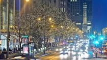 Chicago Holiday Lights Tour, Chicago, Christmas