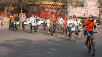 Backlanes on a bicycle, New Delhi, Bike & Mountain Bike Tours