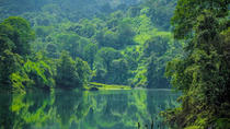 Guided Jeep Safari Tour of Gavi from Thekkady with Breakfast, Kochi, Cultural Tours
