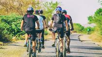 Private Cycling Tour: Experience the Beauty of Udaipur at Sunrise, Udaipur