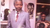 Mandela History Day Tour in Johannesburg, Johannesburg, Day Trips