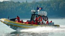 Full-Day Whale Watching Cruise from Quebec, Quebec City, null