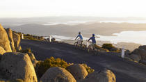 Descenso ciclista del Monte Wellington desde Hobart, Hobart, Bike & Mountain Bike Tours