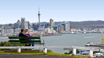 Auckland City Small Group Morning Discovery Tour, Auckland, Cultural Tours