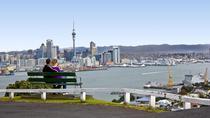 Auckland Shore Excursion: Small-Group Auckland City Tour