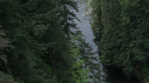 Ingresso al ponte sospeso di Capilano, Vancouver, Attraction Tickets