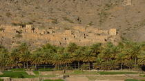 Private Tour to Misfat Al Abreyeen and Jebel Shams, Muscat, Private Day Trips