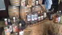 Cayman Spirits Distillery Tour and George Town Shopping, Îles Caïmans