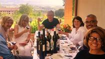 Winemaker for a Day: Tour an Organic Winery, Assisi, Wine Tasting & Winery Tours