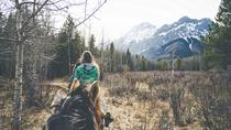 1-Hour Horseback Trail Ride in Kananaskis, Banff