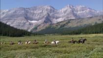 Half-Day Horseback Trail Ride in Kananaskis , Banff, Horseback Riding
