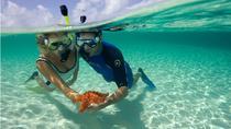 Snorkeling, Hurghada, Snorkeling