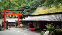 Kyoto Sagano Walk and Bamboo Forest, Kyoto, City Tours