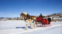 Private Horse Drawn Sleigh Ride from Salzburg, Salzburg, Day Trips