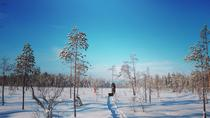7-Day Small-Group Winter Activity Tour in the Wilderness of Northeast Finland, Eastern Finland, ...