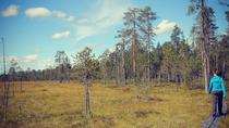 8-Day Small-Group Summer Activity Tour in the Wilderness of Northeast Finland, Eastern Finland, ...