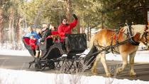 Sand Harbor Lake Tahoe State Park Private Sleigh Ride, Lake Tahoe
