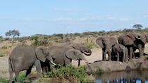 6-Day Nature and Beyond Safari, Arusha, Multi-day Tours