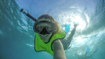 Freeport Shore Snorkel Tour, Freeport, Snorkeling