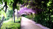 Gardens of Florence Private Tour, Florence, Cultural Tours