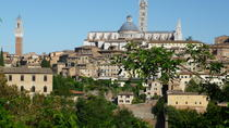 Private Walking Tour: Siena and its Treasures, Siena
