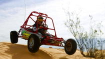 Tour en buggy sur Nellis Dune, Las Vegas, 4WD, ATV & Off-Road Tours