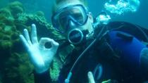PADI Open Water Diver Course in Lake Geneva including Online Class, Ginevra
