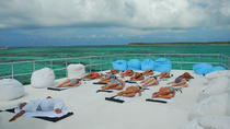 Ocean Spa Doctor Fish Cruise, Punta Cana