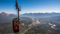 Jasper SkyTram, Jasper, Nature & Wildlife
