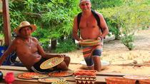 Alter do Chão Arapiuns River, North Brazil, Nature & Wildlife
