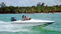 3-Hour Bavaro Splash Speedboat and Snorkeling from Punta Cana, Punta Cana, Snorkeling