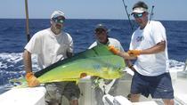 Half-Day Punta Cana Deep-Sea Fishing Charter , Punta Cana, Fishing Charters & Tours