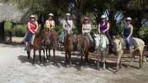 Horseback Riding to Maimon River from Punta Cana, Punta Cana, Horseback Riding