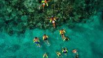 Marinarium Snorkeling Half Day Cruise, Punta Cana, Glass Bottom Boat Tours