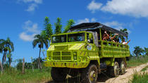 Punta Cana Super Safari Tour, Punta Cana, Safaris