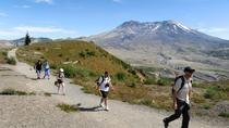 Small-Group Full-Day Tour of Mount St Helens Volcano from Portland, Portland, Day Trips