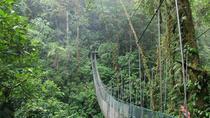 Full day hiking at Arenal Volcano and hanging brides from San Jose, San Jose, Hiking & Camping