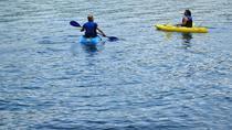 Full day Kayaking and animals, birds watching tour at Arenal lake from San Jose, San Jose, Cultural...