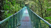 Full day Monteverde from San Jose hanging bridge and Reptile Amphibians watching, San Jose,...