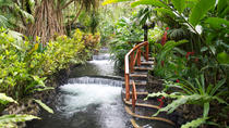 Full day Zip line and hot spring watch wild life at Arenal volcano from San Jose