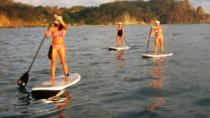 Nosara river stand up paddleboard (SUP) magrove and environment watching tour in Guanacaste, ...