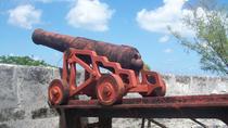 Bahamas Medieval Fort Tour, Nassau, Cultural Tours