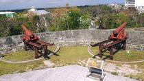 Historic Fort Tour in Nassau, Nassau, Historical & Heritage Tours