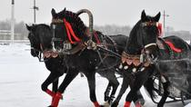 Private Half-Day Tour of St Petersburg's Royal Suburbs Including a Horse Ride in a Traditional ...